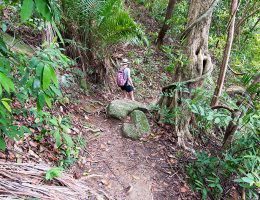 Penang - park narodowy - trekking do monkey beach