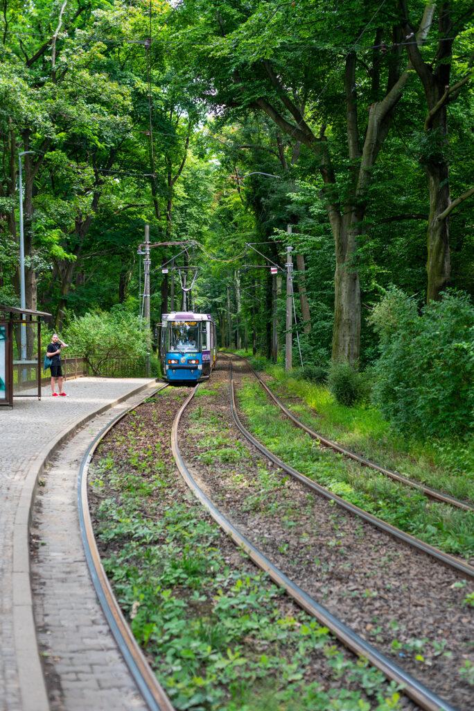 Przystanek tramwajowy przy Parku Szczytnickim - mój ulubiony kadr